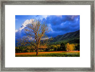 Pointing To Majestry  Framed Print