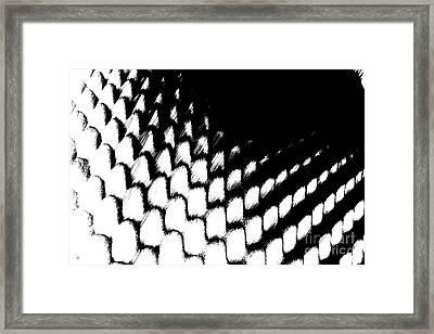 Pointless Framed Print by Steven Macanka