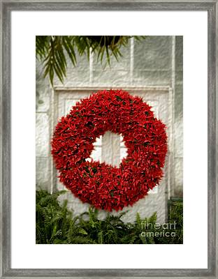 Pointsetter Christmas Reef Framed Print by Iris Richardson