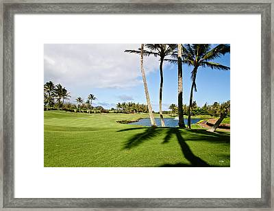 Poipu Bay #18 Framed Print by Scott Pellegrin
