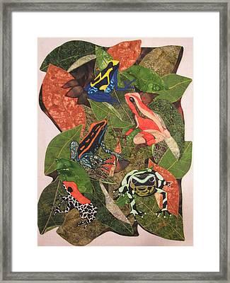 Poison Dart Frogs #2 Framed Print by Lynda K Boardman