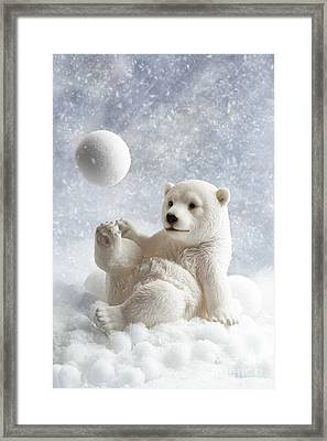 Polar Bear Decoration Framed Print by Amanda Elwell