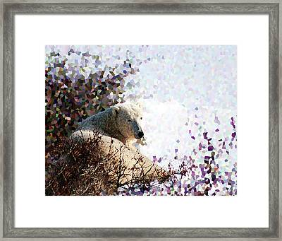 Polar Bear In Willows Framed Print