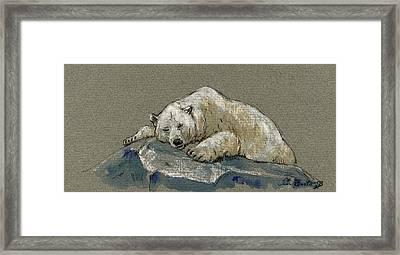 Polar Bear Sleeping Framed Print by Juan  Bosco
