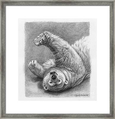 Polar Bear Stretch Framed Print by Svetlana Ledneva-Schukina
