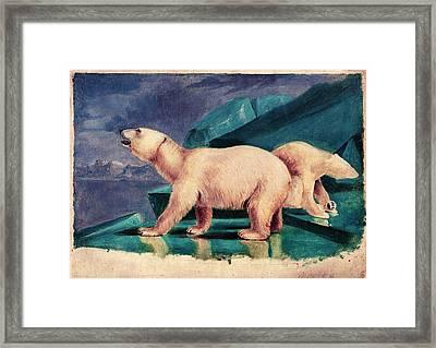 Polar Bears Framed Print by American Philosophical Society