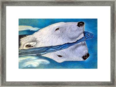 Polar Dip Framed Print