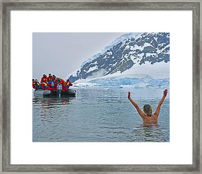 Polar Dip Framed Print by Tony Beck