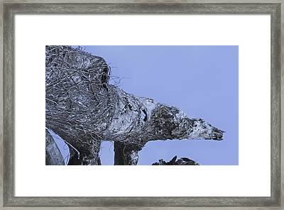 Polar Framed Print