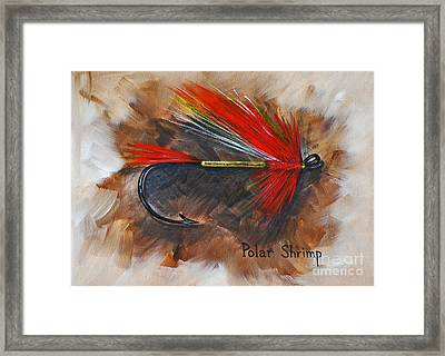 Polar Shrimp Fishing Fly Framed Print