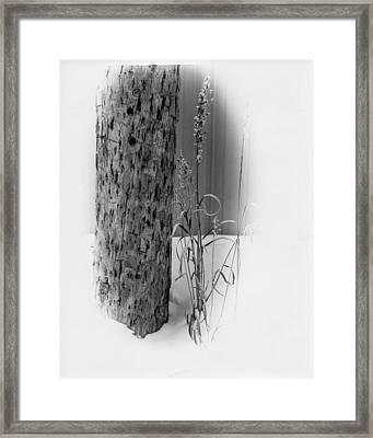 Pole And Grass Vignette Framed Print