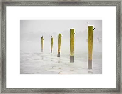 Poles Framed Print by Karol Livote