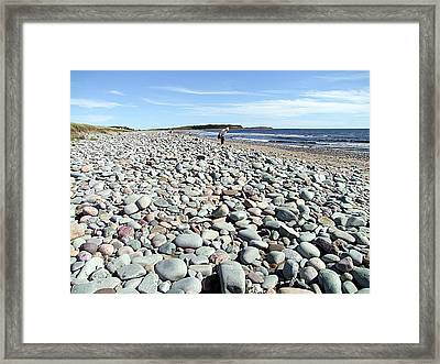 Polished By The Sea Framed Print by George Cousins
