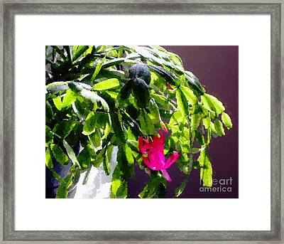 Polka Dot Easter Cactus Framed Print by Barbara Griffin