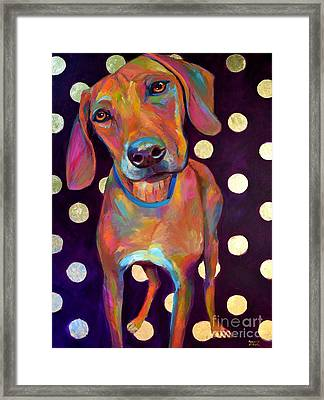 Polka Pooch Framed Print by Robert Phelps