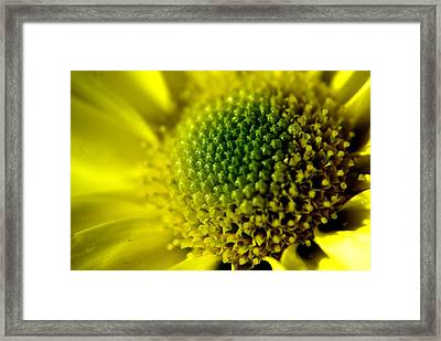 Pollen Factory Framed Print