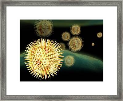 Pollen Grains Framed Print by Harvinder Singh