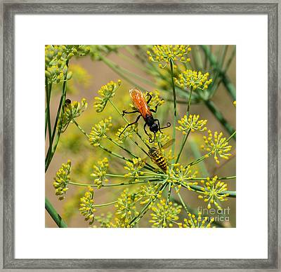 Framed Print featuring the photograph Pollenation Danger by Debby Pueschel