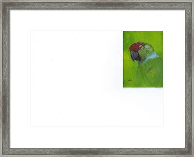 Polly Framed Print by Catherine Swerediuk