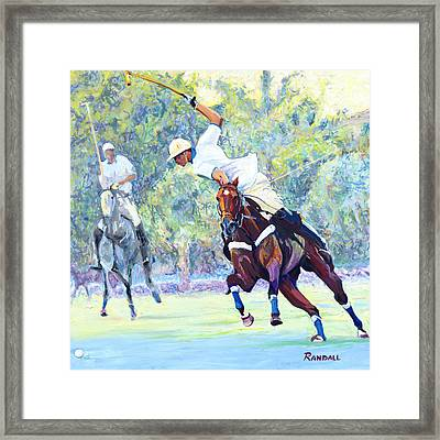 Polo Framed Print by David Randall