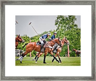 Polo Play I Framed Print by Sherri Cavalier