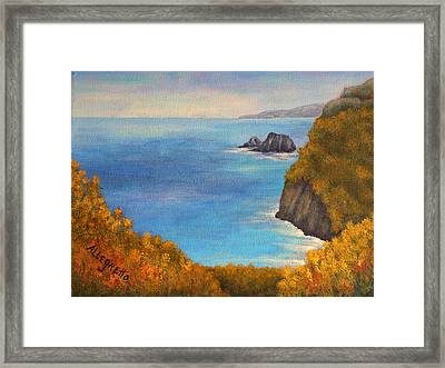 Pololu Valley Lookout Framed Print by Pamela Allegretto