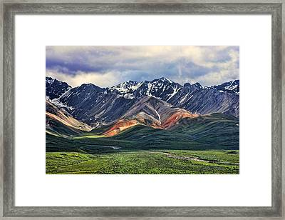 Polychrome Framed Print by Heather Applegate