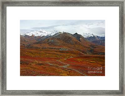 Polychrome Pass Framed Print