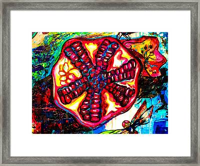 Pomegranate And Dragonfly Framed Print by Genevieve Esson