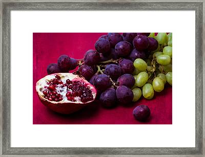 Pomegranate And Green And Red Grapes Framed Print by Alexander Senin