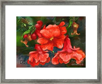 Pomegranate Blooms Floral Painting Framed Print