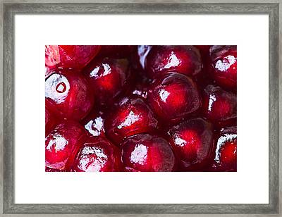 Pomegranate Closeup Framed Print by Alexander Senin