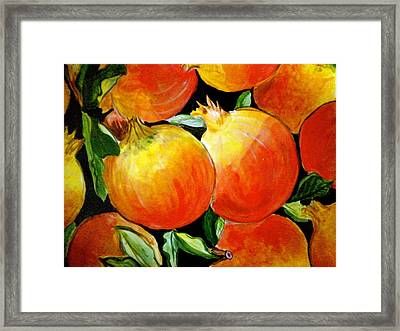 Pomegranate Framed Print by Debi Starr