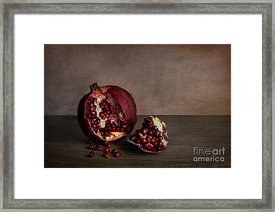 Pomegranate Framed Print by Elena Nosyreva
