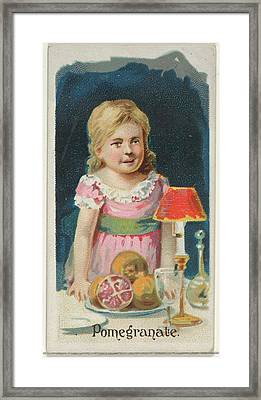 Pomegranate, From The Fruits Series N12 Framed Print by Issued by Allen & Ginter