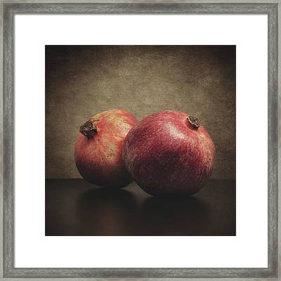 Pomegranate Framed Print by Taylan Apukovska