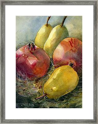 Pomegranates And Pears Framed Print by Jen Norton