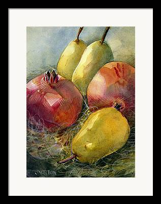 Pomegranate Framed Prints