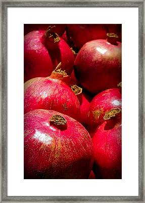 Pomegranates Framed Print by Karen Wiles