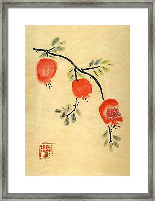 Framed Print featuring the painting Pomegranates by Linda Feinberg