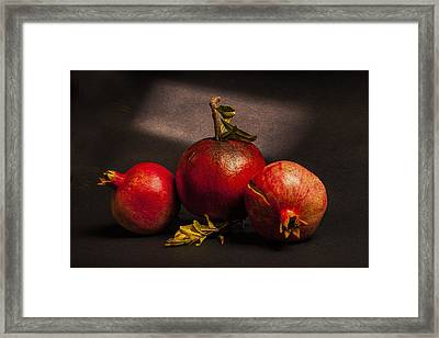 Pomegranates Framed Print by Peter Tellone