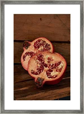 Pomegrantes4511 Framed Print