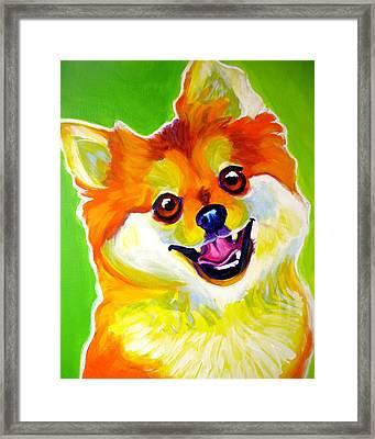 Pomeranian - Tiger Framed Print