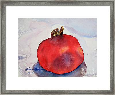 Framed Print featuring the painting Pomogranate Punica Granatum by Shirin Shahram Badie