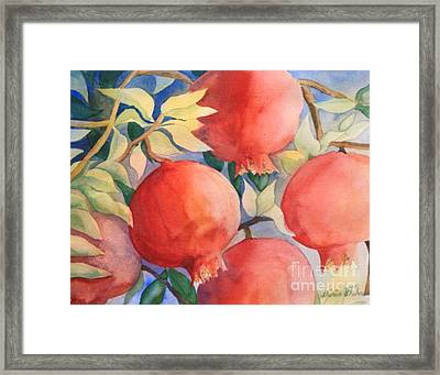 Framed Print featuring the painting Pomogranates by Shirin Shahram Badie