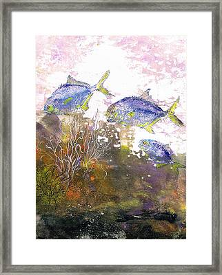 Pompano Trio_verticle Framed Print by Nancy Gorr