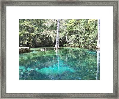 Ponce De Leon Springs Framed Print by Michele Kaiser