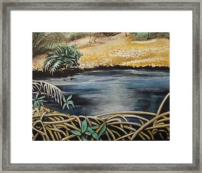 Pond 1 Framed Print