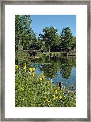 Pond And Bridge At Virginia City Montana Framed Print