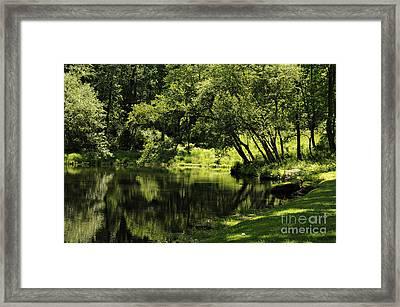 Pond At Glen Oaks Farm Framed Print